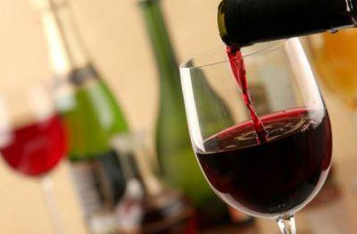 Teran vine tasting
