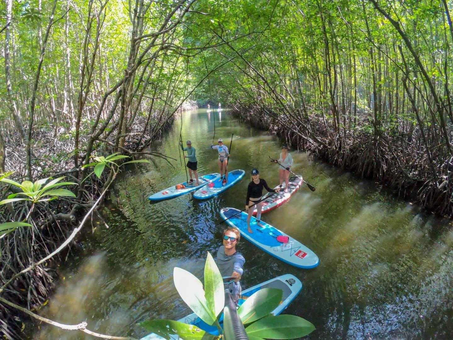 Suping in the jungle