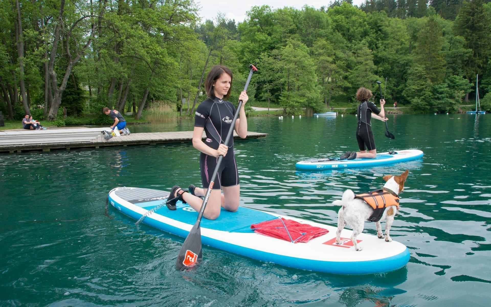 Introduction SUP course